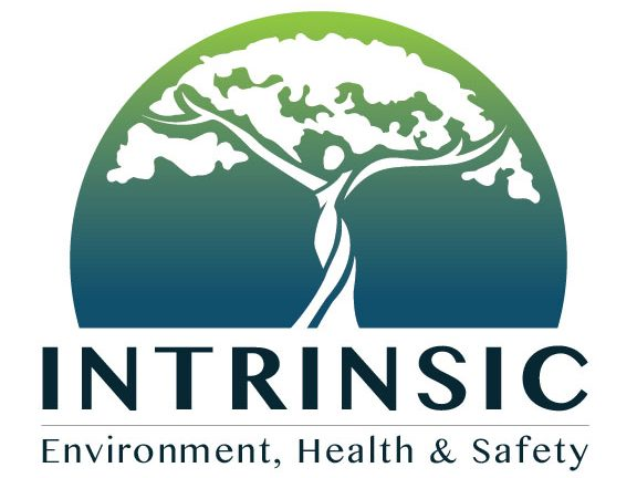 Intrinsic Environment, Health and Safety